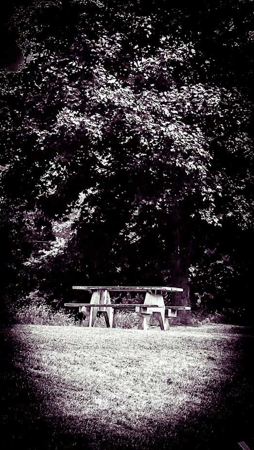 Lonely-Table-from-book